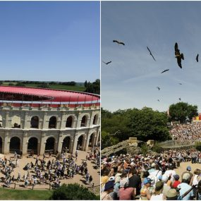 Things to do ~ Puy du Fou