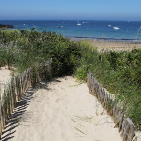 Why Choose Us? - The Vendee